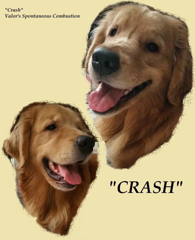 Crash Nov 2015
