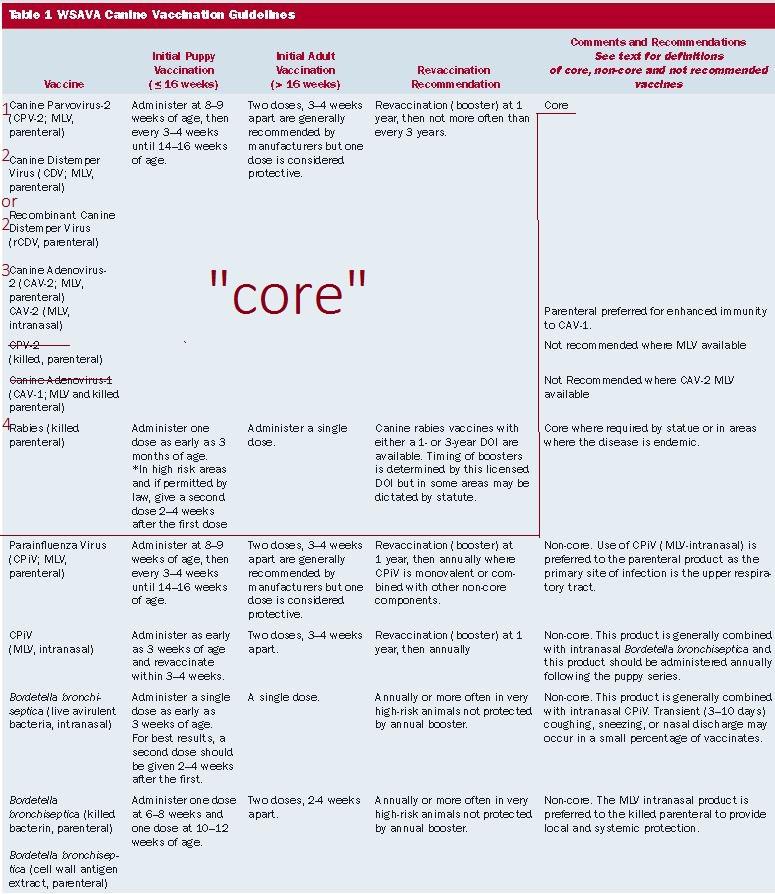wsava core vaccinesa