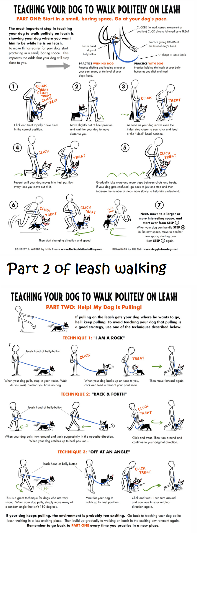 leash walking