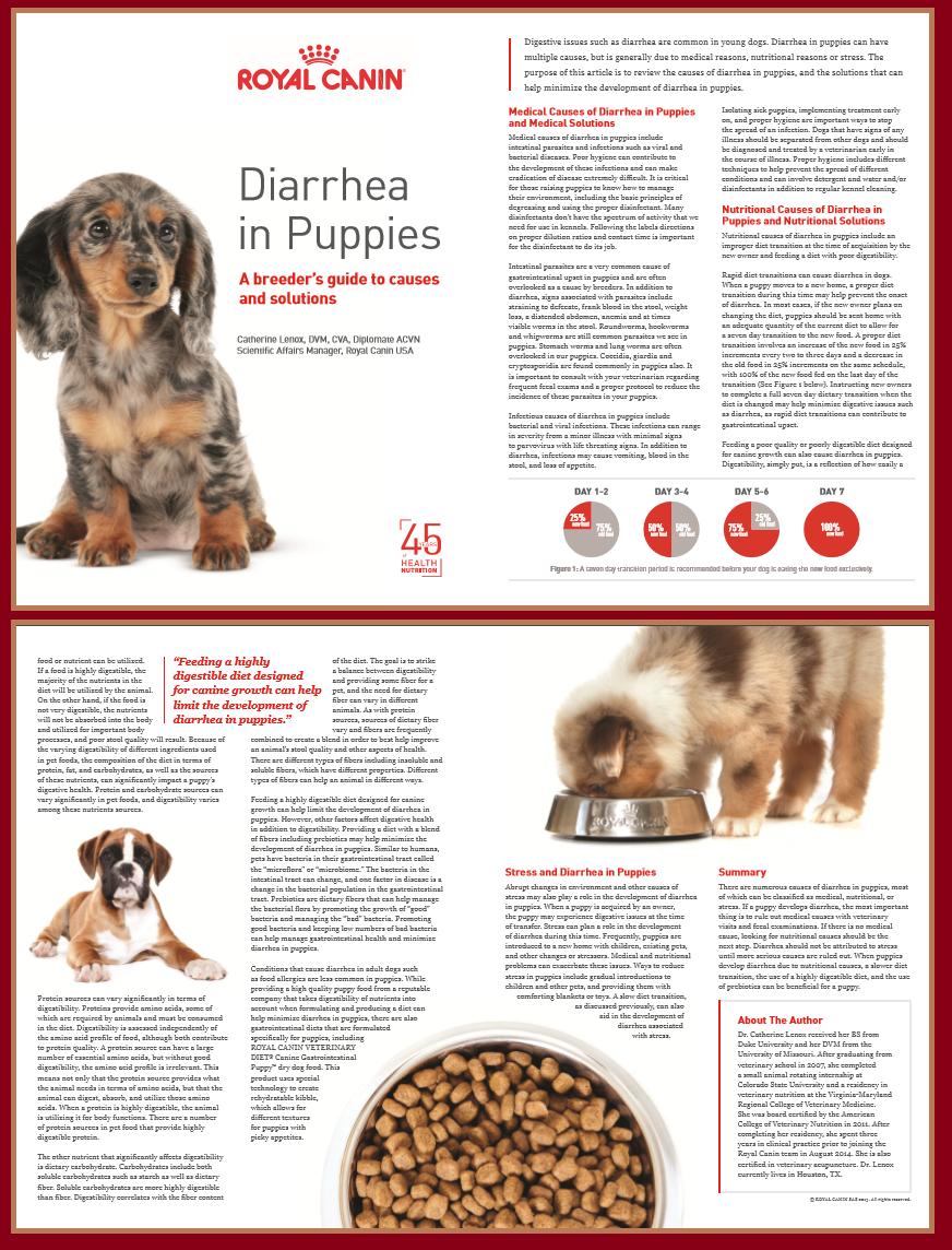 puppies diareah2